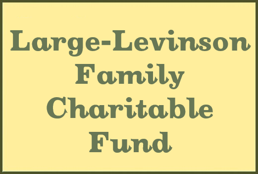 Large-Levinson Family Charitable Fund