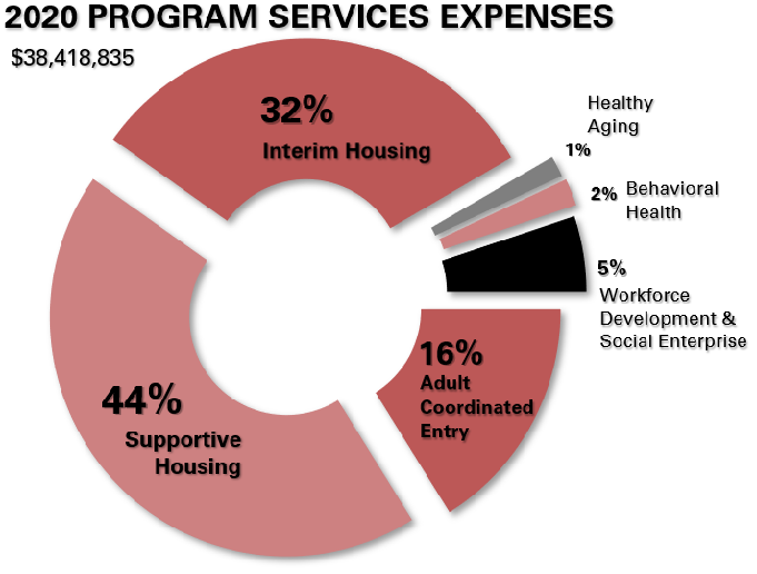 2020 Financials- Program Services Expenses